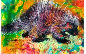 34-porcupine-pear